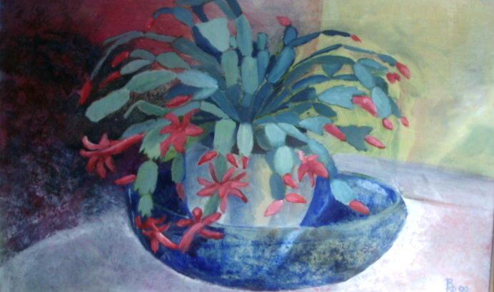 Xmas cactus oil